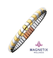 Magnetix Collection  2014