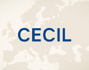 Cecil Store Boutique